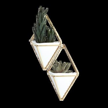 TRIGG Set de 2 cache-pots muraux dorés