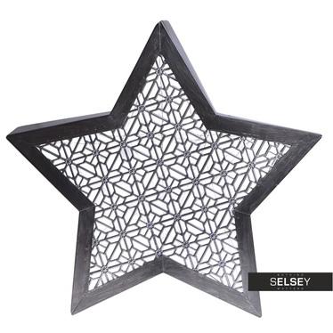 STAR Déco de Noël LED