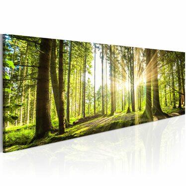ÉCLAT DE LA JOURNÉE Tableau sur toile 120x40 cm