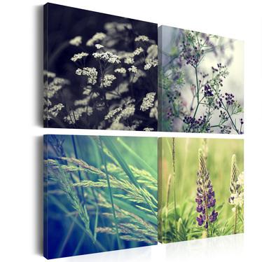 CLAIRIÈRE MAGIQUE Set de 4 tableaux sur toile 80x80 cm