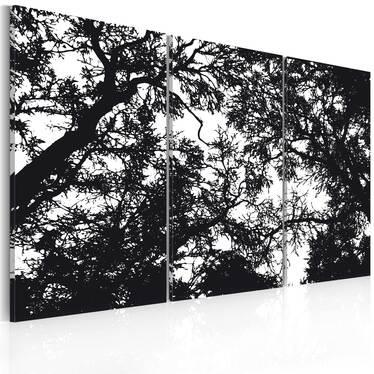 FORÊT DENSE Tableau sur toile 60x40 cm